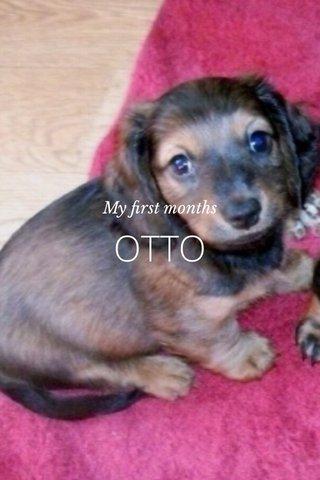 OTTO My first months