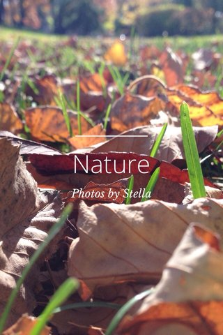 Nature Photos by Stella