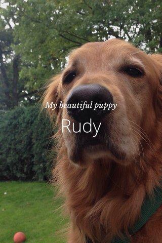 Rudy My beautiful puppy