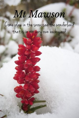 Mt Mawson Come play in the snow, see the wonderland that is in our very own back yard.