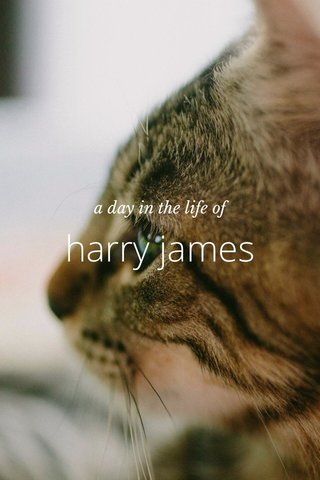harry james a day in the life of