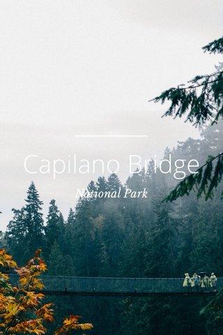 Capilano Bridge National Park