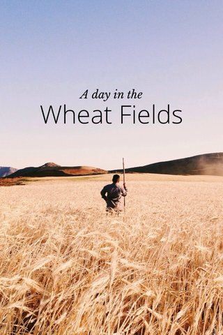 Wheat Fields A day in the