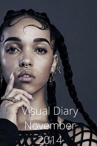 Visual Diary November 2014