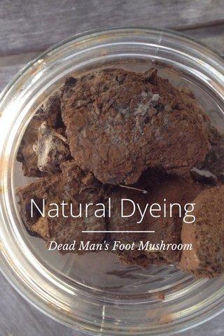 Natural Dyeing Dead Man's Foot Mushroom