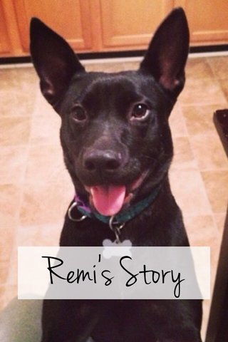 Remi's Story