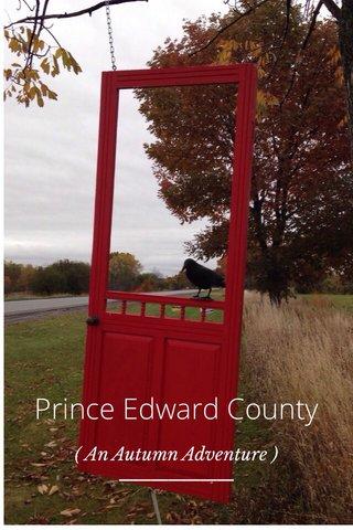 Prince Edward County ( An Autumn Adventure )