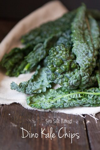 Dino Kale Chips Sea Salt Baked