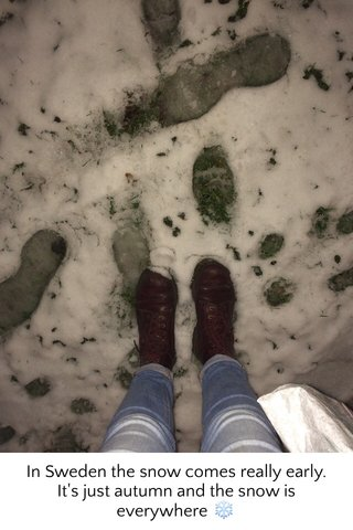In Sweden the snow comes really early. It's just autumn and the snow is everywhere ❄️