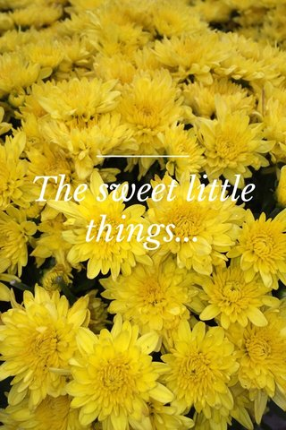 The sweet little things...