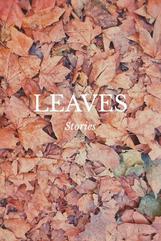 LEAVES Stories