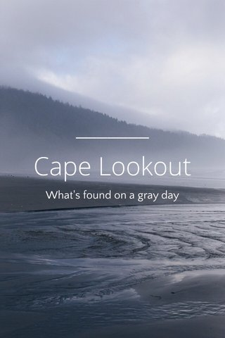 Cape Lookout What's found on a gray day