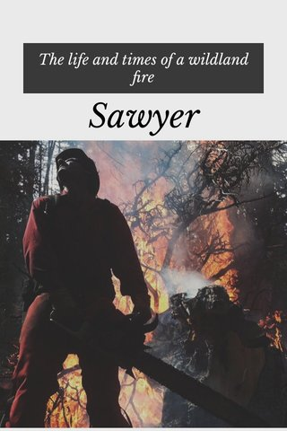 Sawyer The life and times of a wildland fire