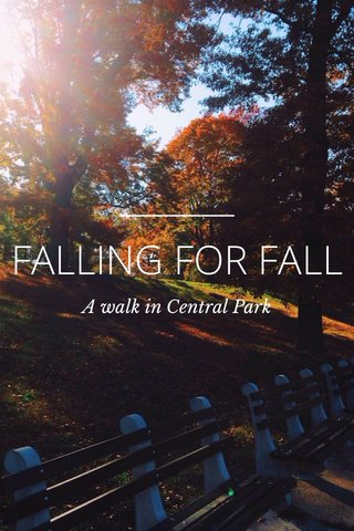 FALLING FOR FALL A walk in Central Park