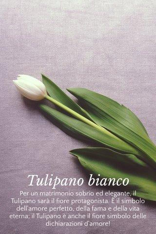 Tulipano bianco Per un matrimonio sobrio ed elegante, il Tulipano sarà il fiore protagonista. È il simbolo dell'amore perfetto, della fama e della vita eterna; il Tulipano è anche il fiore simbolo delle dichiarazioni d'amore!