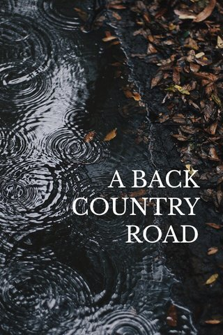 A BACK COUNTRY ROAD