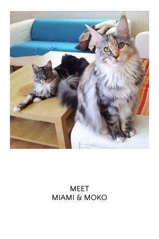 MEET MIAMI & MOKO