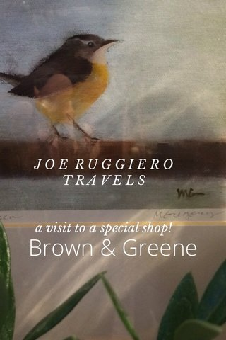 Brown & Greene J O E R U G G I E R O T R A V E L S a visit to a special shop!