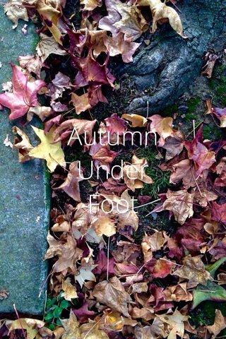 Autumn Under Foot