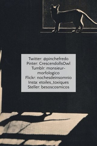 Twitter: @pinchefredo Pinter: CrescendollsOwl Tumblr: monsieur-morfologico Flickr: nochesdeinsomnio Insta: etoiles_toxiques Steller: besoscosmicos