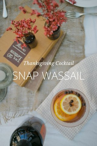 SNAP WASSAIL Thanksgiving Cocktail
