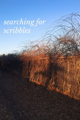 searching for scribbles