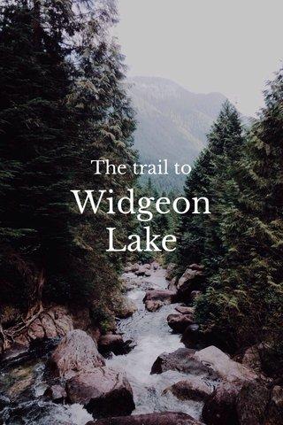 Widgeon Lake The trail to