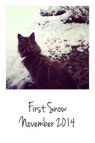First Snow November 2014