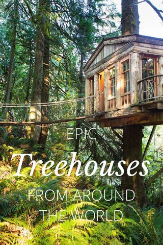 Treehouses EPIC FROM AROUND THE WORLD