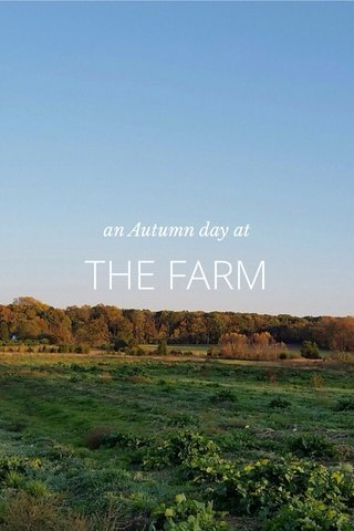 THE FARM an Autumn day at