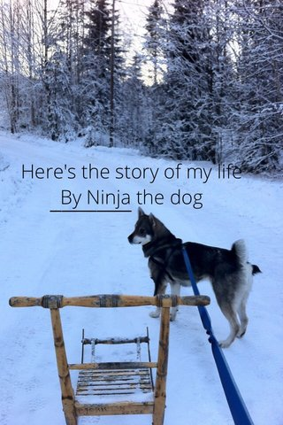 Here's the story of my life By Ninja the dog