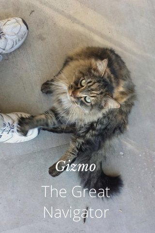 The Great Navigator Gizmo