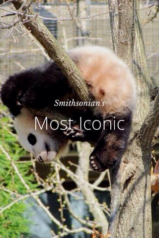Most Iconic Smithsonian's