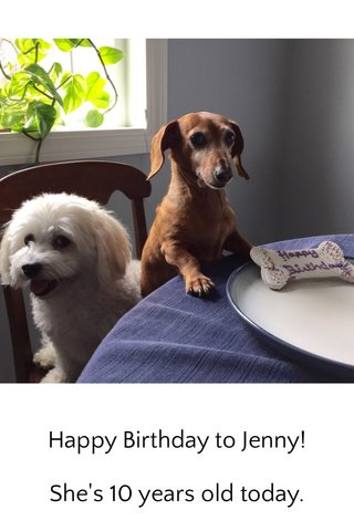 Happy Birthday to Jenny! She's 10 years old today.