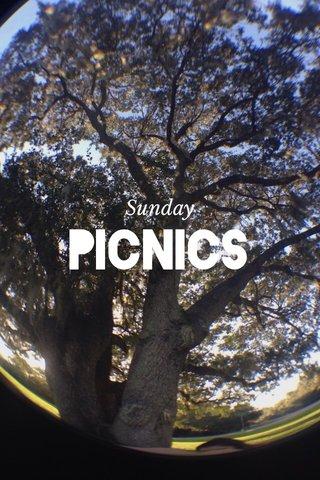 picnics Sunday