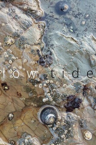 tide low