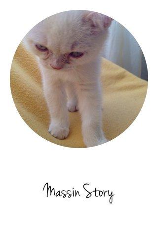 Massin Story