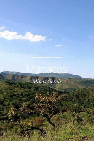 Macacos Minas Gerais