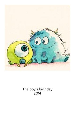 The boy's birthday 2014