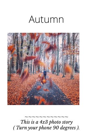 Autumn ~~~~~~~~~~~~ This is a 4x3 photo story ( Turn your phone 90 degrees ).
