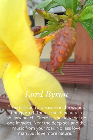 """Lord Byron """"There is such a pleasure in the woods unexplored. There is such beauty in solitary beach. There is a society that no one invades. Near the deep sea and the music from your roar. No less love man .But love more nature. """""""