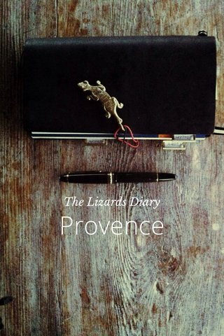 Provence The Lizards Diary