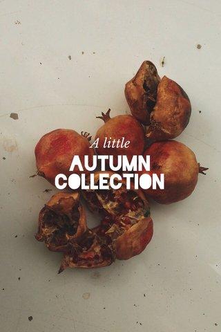 Autumn Collection A little