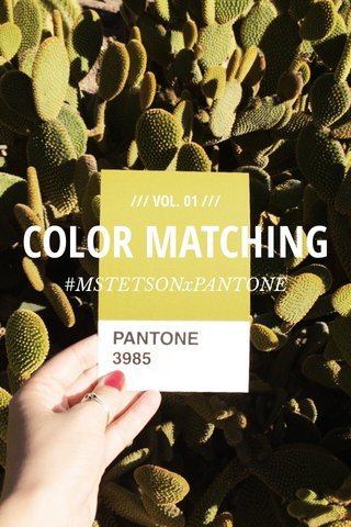 COLOR MATCHING #MSTETSONxPANTONE /// VOL. 01 ///