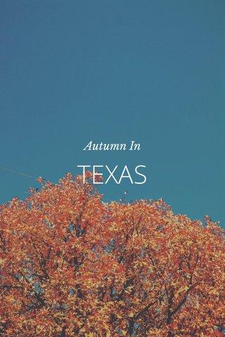 TEXAS Autumn In