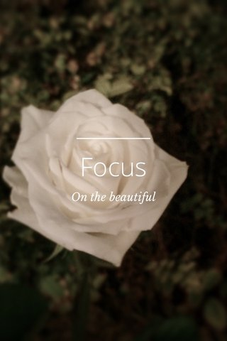 Focus On the beautiful