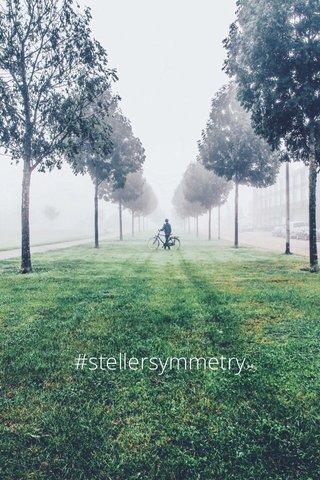 #stellersymmetry