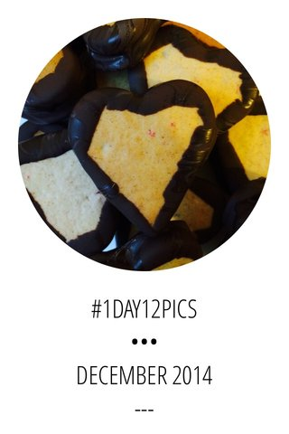 #1DAY12PICS ••• DECEMBER 2014 ---