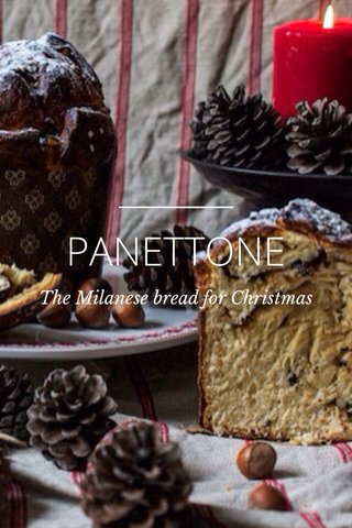PANETTONE The Milanese bread for Christmas