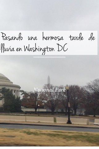 Pasando una hermosa tarde de lluvia en Washington DC National Park